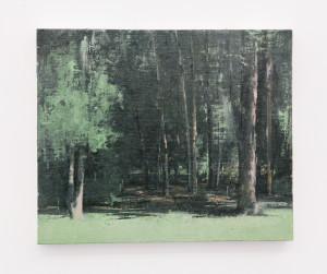 Eldar Farber, Friedrichshain volkspark Wald
