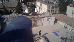 amir yatziv 2
